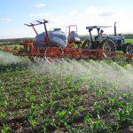 Estudo • Uso prolongado de bioinseticida à base de Bt gera resistência