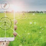 """""""Capacitar a inovação para uma agricultura sustentável"""""""