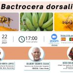 """Webinar sobre: """"Bactrocera dorsalis"""""""