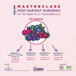 Pequenos Frutos: Masterclass em pós-colheita
